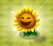 Sunflower Free Promo