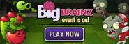 Big Brainz Piñata Party ad