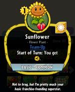 SunflowerHDescription