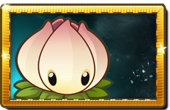Power Lily New Premium Seed Packet.png