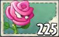Roseswordman Seed Packet