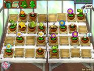 Zen Garden PVZ1