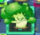 Broccolidega
