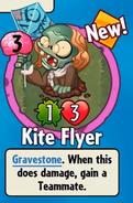Kite Flyer Got