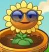 Sunflower.costume