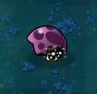 Scaredshroomy