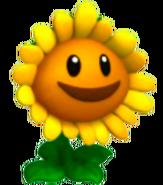 Sunflower-HQ