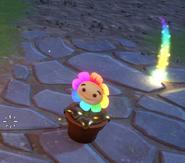 Rainbow Flower with sun