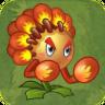 Match Flower Boxer2