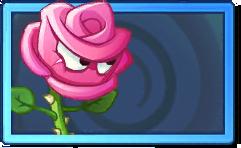 Roseswordman Rare Seed Packet.png
