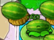 Melon-pult Blinks