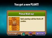 You got Primal nut