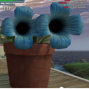 7. Flax Cannon
