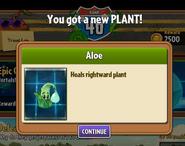 Got Aloe