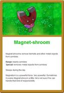 Magnet Online