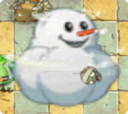 SnowCottonPlantFood2