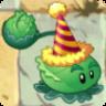Cabbage-pultBirthdayzCostume