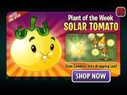 SolarTomatoPlantoftheWeek