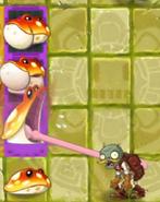 Toadstool pf1