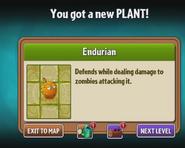 Endurian Unlocked