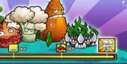 Vigorous Broccoli JttW5