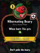 Hibernating Beary Description