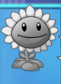 Sunflower Ghost