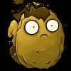Wall-nut 2nd Degrade