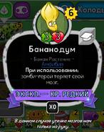 Brainana Rus