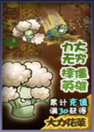 Vigorous Broccoli JttW7