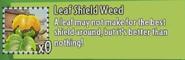 LeafShieldGW2Des