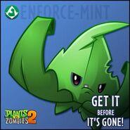 Enforce-Mint Poster 2