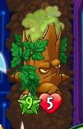2 traits Poison Oak