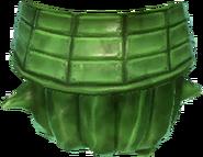 Cactus jade 1