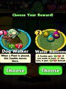 Choice between Dog Walker and Water Balloons