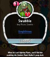SwabbieHDescription