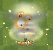 Explode-o-Vine Planted