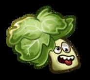 Headbutter Lettuce Plant Food