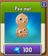 Pea-nut New Store