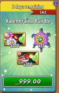 Valenbrainz Bundle 2 2021 After