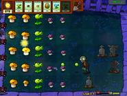 PlantsVsZombies297