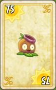 Gumnut Endless Zone Card Level 7-9