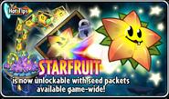 Hot Tips Starfruit
