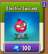 Electric Currant Store