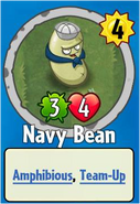 Receiving Navy Bean