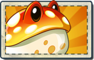 Toadstool Boosted Seed Packet