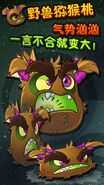 Kiwibeast in a promotional picture