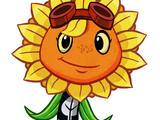 Destello Solar