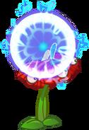 Anthurium PF 2