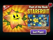Starfruit Plant of the Week 2020